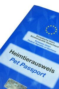 Der EU-Heimtierausweis ist besonders auf Reisen wichtig.
