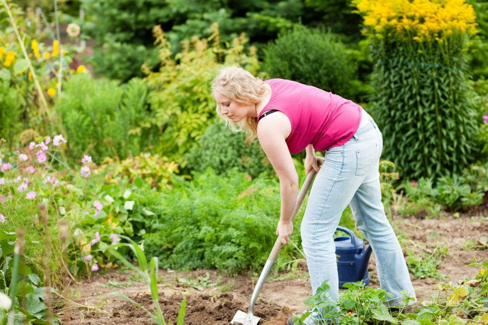 Meinen Dobermann im eigenen Garten vergraben. Worauf muss ich achten?