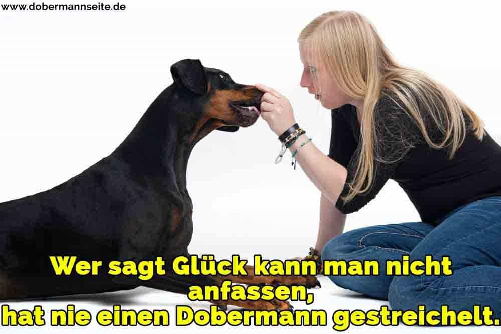 Ein Mädchen streichelt ihre Dobermann